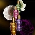 Масла для волосся kerastase - ефективна боротьба за красу локонів