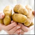 Відбілююча картопляна маска для рук.
