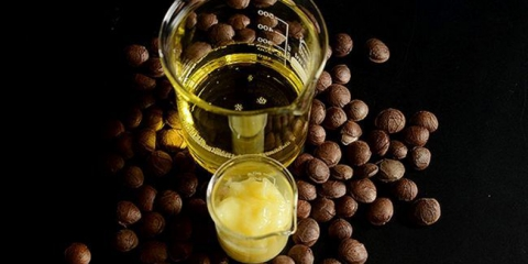 Арганова олія для росту волосся: рецепти і рекомендації