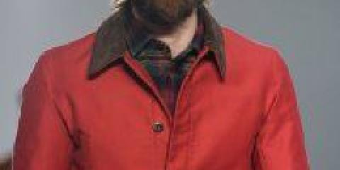 Борода на світових подіумах 2012-2013