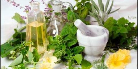 Які трави корисні для волосся: рецепти і рекомендації